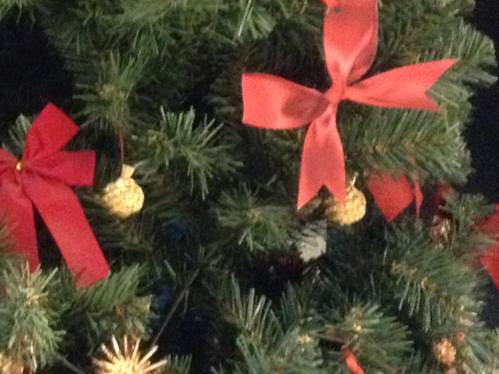 Tradiční nabídka prodeje vánočních kaprů